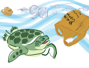 turtle-wbags-03